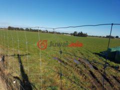 新西兰Ryal Bush总占地119300平方米的乡郊地产