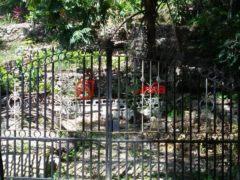 牙买加圣杰姆斯的房产