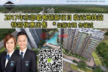 居外网在售新加坡2卧2卫新开发的房产总占地24394平方米SGD 1,143,000