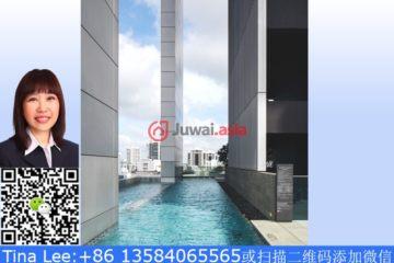 中星加坡房产房价_新加坡房产房价_居外网在售新加坡2卧2卫新开发的房产总占地4563平方米SGD 4,888,800
