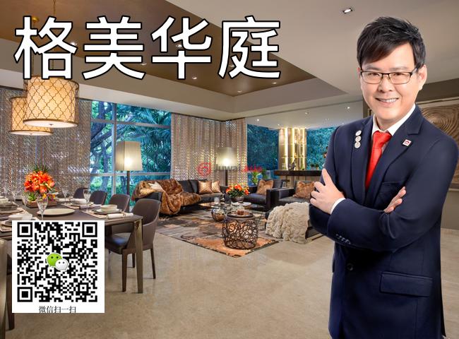 新加坡中星加坡新加坡的房产,57 Grange Road,编号37148564