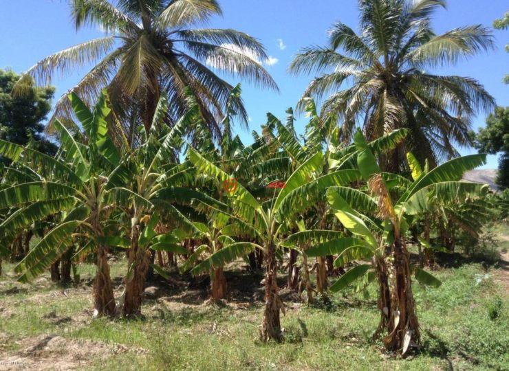 海地阿蒂博尼特的房产,#1 ROUTE NATIONALE,编号35893850